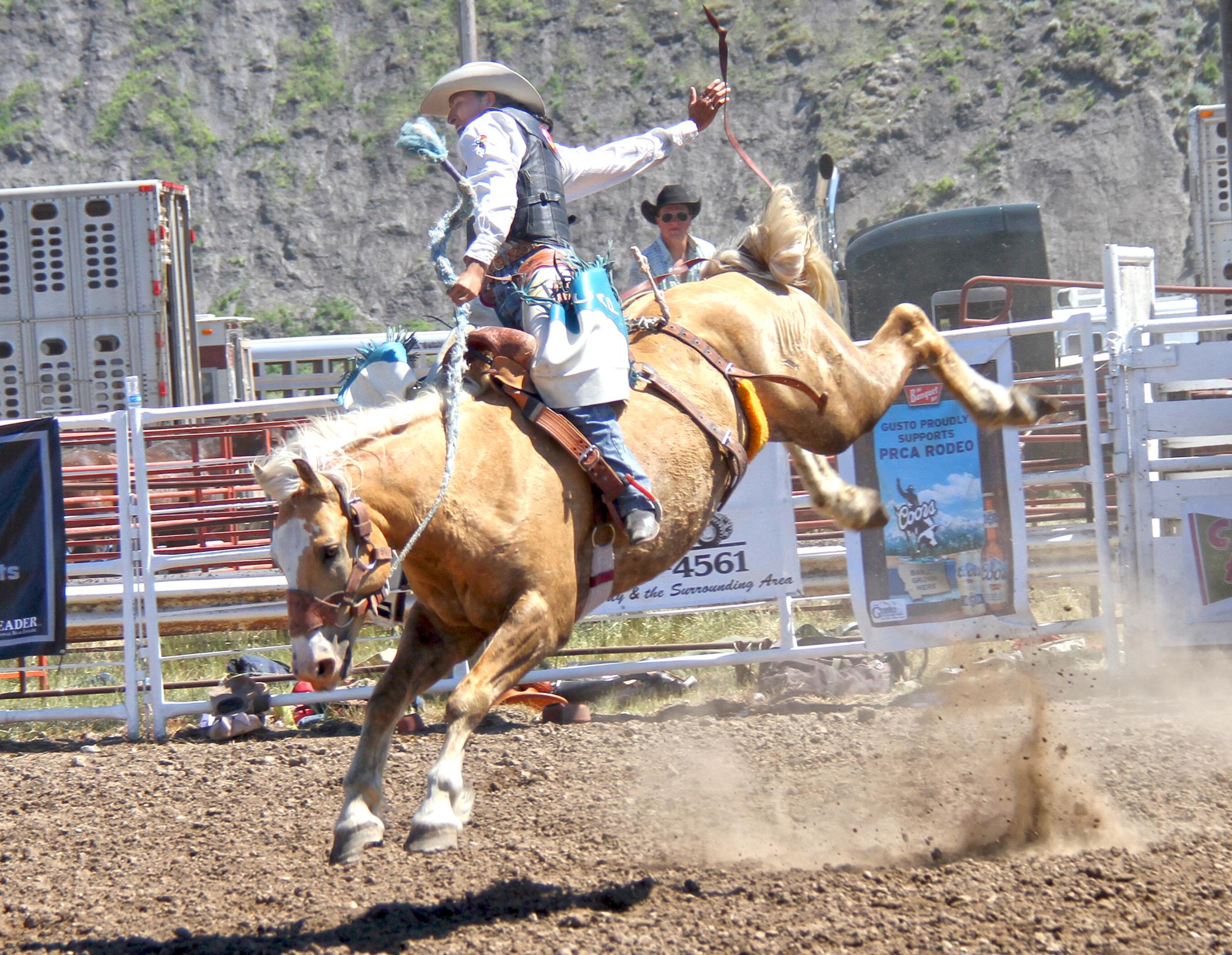 Visit Great Falls Montana Big Sky Roundup Rodeo Visit