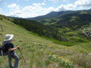 hiking near Great Falls Montana