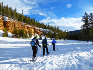 Cross country Skiing near Great Falls Montana